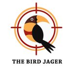 Bird Jager 1.3 APK MODs Unlimited money free Download on Android