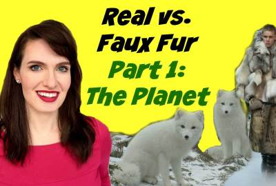 real vs faux fur part 1 the planet thumb