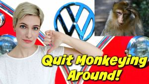 volkswagen monkey tests research modvegan