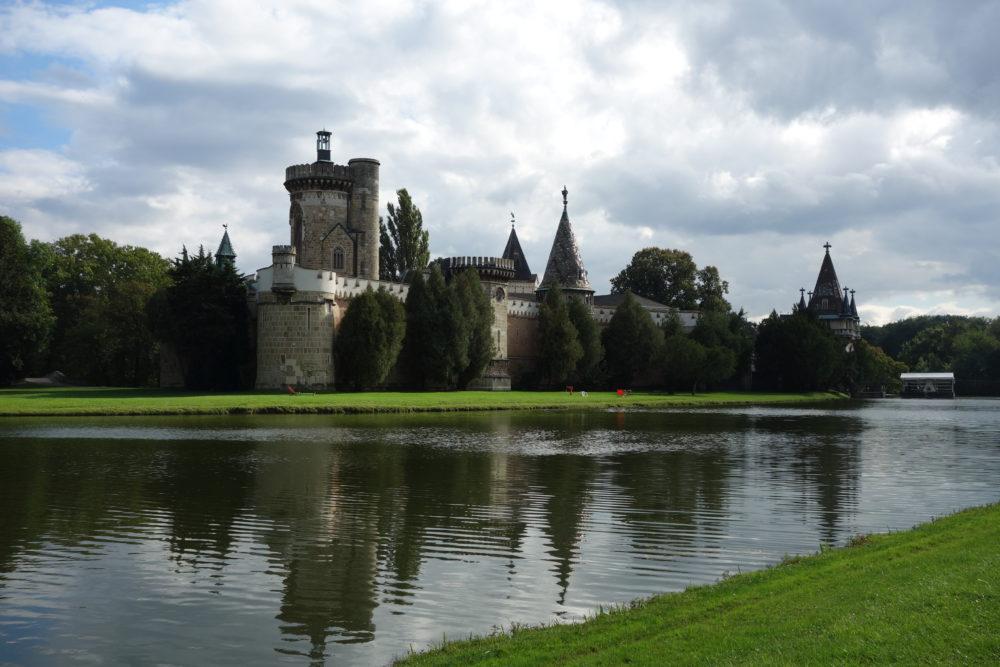 Ochsen in der Burg