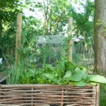 tuinuitbreiding met gevlochten moestuinbakken