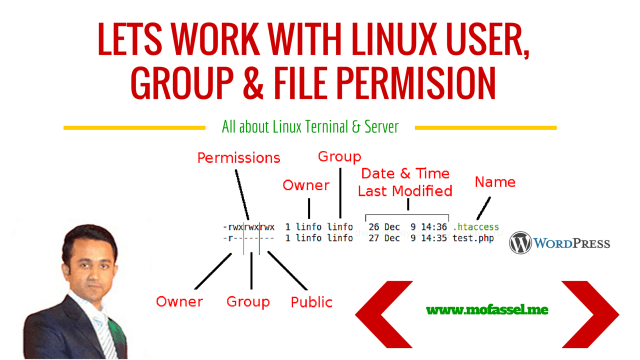 Working with Linux Terminal and Server
