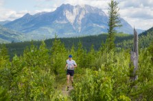 King of the Hill Trail Run Race - 3rd July 2016
