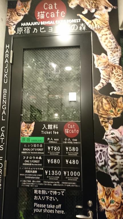 ヒョウ猫の森ドア
