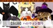 【2020】ハロウィン祭り
