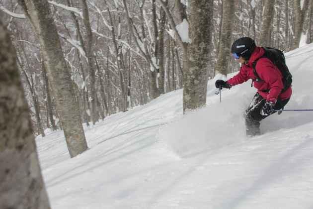 Skifahren in Japan, Skiurlaub in Japan, Tiefschnee, Mogasi