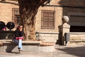 sarah in Toledo