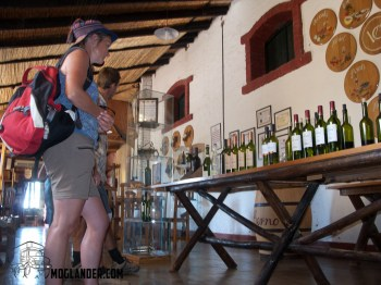 Inside the tasting room - Mendoza Wineries