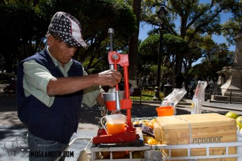 Fresh orange juice vendor in Sucre, Bolivia