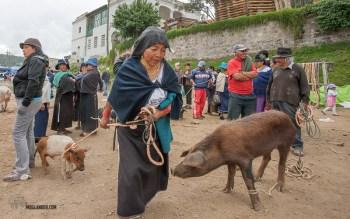 Ecuador Market Day