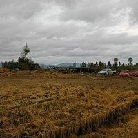 Morimenta: la Regione riconosce il disastro.