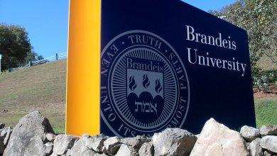 Photo of منحة  جامعة برانديز لدراسة الماجستير  في أمريكا(ممولة بالكامل)