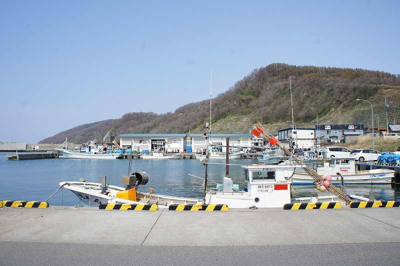 浜益ふるさと朝市が開催される浜益漁港