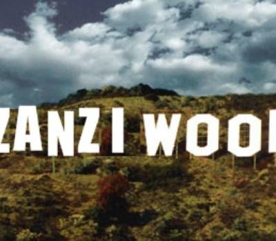 Mzanziwood South Africa film industry