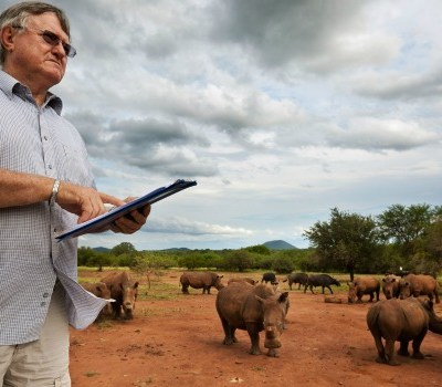 save rhinos by legalizing horn trade