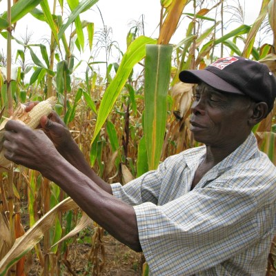 Two agri-tech startups took part in the Seedstars Harare competition, with Rera Online Farm winning. Photo - AP - Donna Bryson