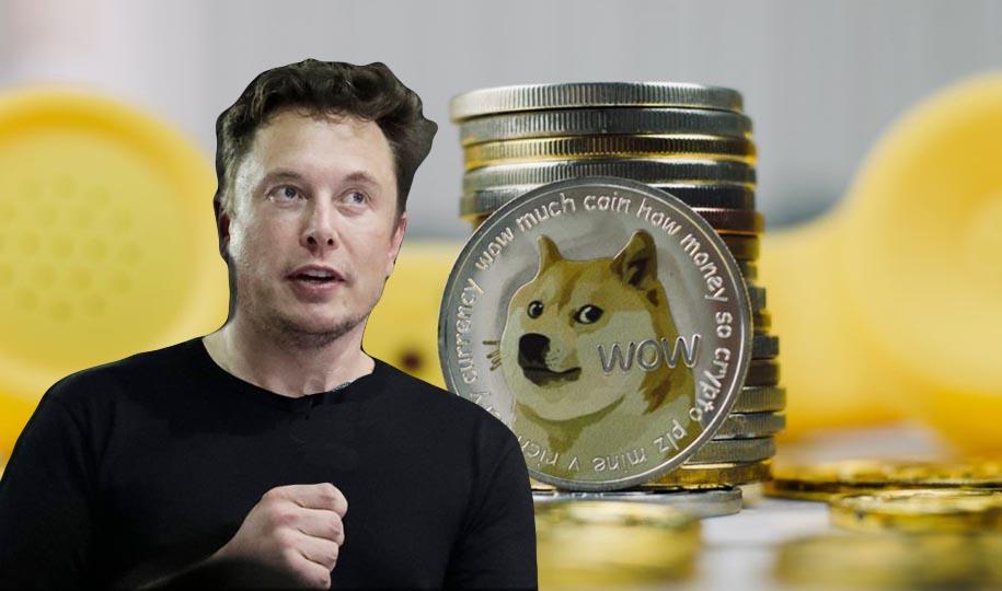 Musk Binance