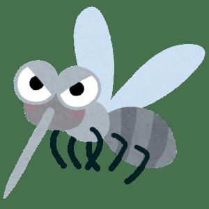 寝てる時 蚊 対策 部屋 隠れる 見つける方法