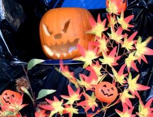 仙台 ハロウィン 画像