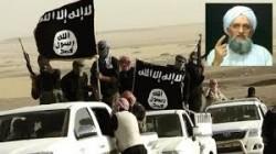 تغريدات د.محمد السعيدي حول إعلان القاعدة فتح فرع لها في شبة القارة الهندية