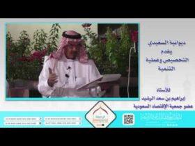 | التخصيص وعملية التنمية مع أ. إبراهيم بن سعد الرشيد