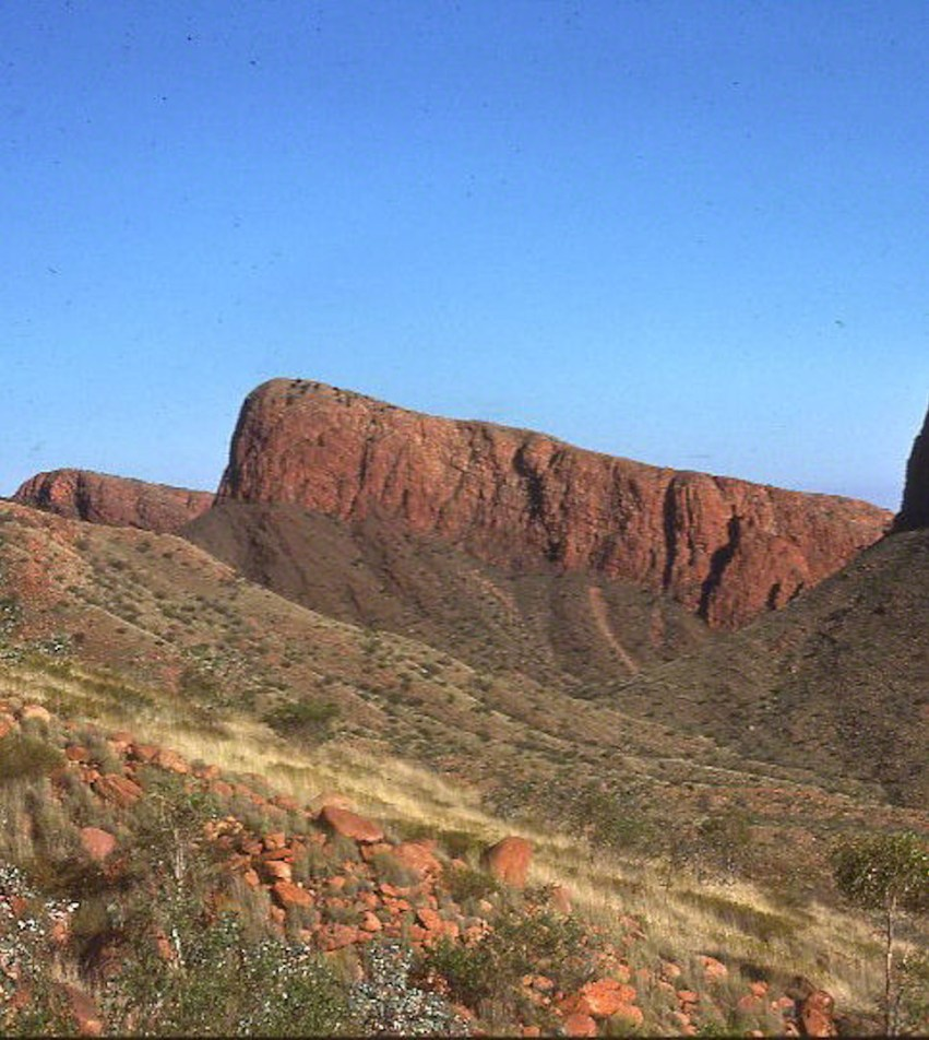 mt liebig formation