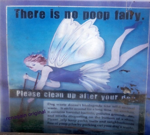 "a winged fairy flying with a pooper scooper. ""There is no poop fairy"""