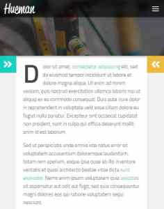 Hueman Theme Review Best WordPress Theme device