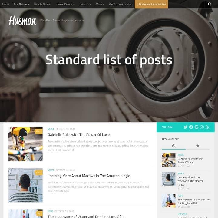 Hueman Theme Review Best WordPress Theme post