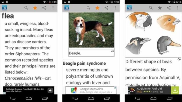 تطبيق Veterinary Dictionary