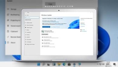 ويندوز 11 النسخة المستقرة: إليك كيفية تحميل النسخة المستقرة من Windows 11 قبل الإطلاق الرسمي