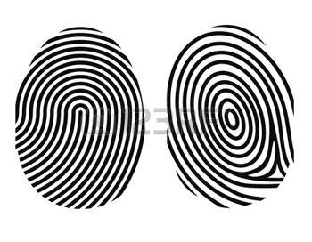 31848559-fingerprint-on-white