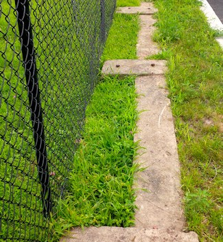 Base of the former fence on Cornell St.