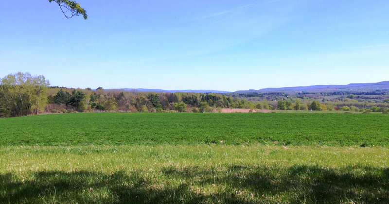 The view from the scenic parking area overlooking the proposed site. Photo provided by the Tribes Hill Heritage Center.