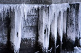 Canal Tour Kopenhagen frozen docks