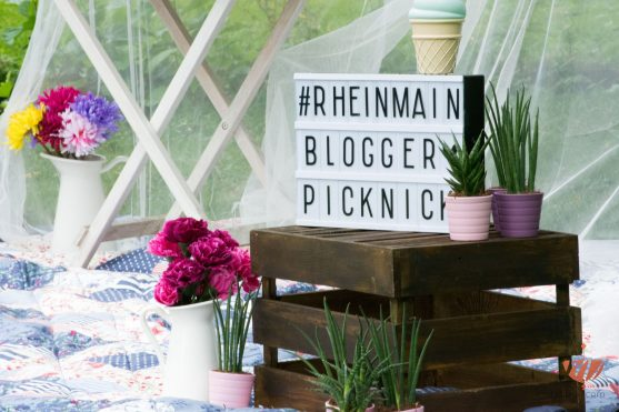 Raspberry-Saltcaramel-Donuts-Mohntage-#rheinmainbloggerpicknick-25