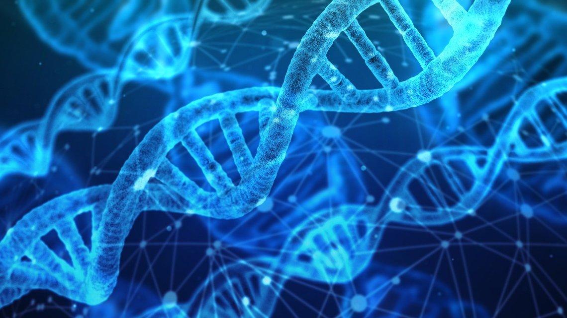 Le bonheur est-il génétique ?