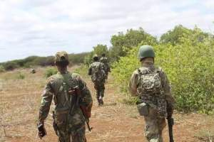 Somali National Army Liberates Janale town