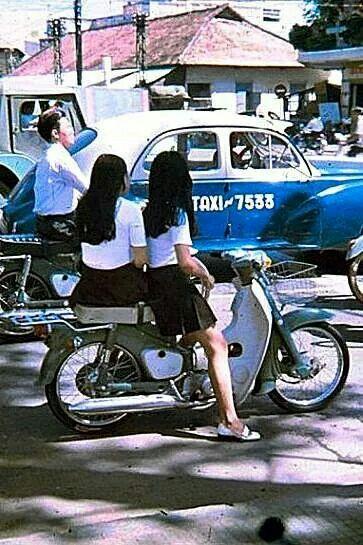 Honda 67, Cub, Dame – Vang bóng một thời