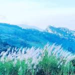 Điệp vụ săn mây trên đỉnh Phu Chee Fah: 1 bình minh 2 đất nước