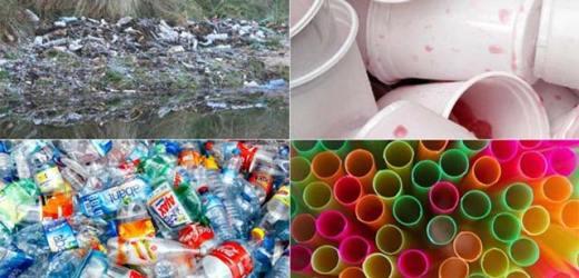 Hóa chất trong các sản phẩm tiêu dùng nhựa nguy hiểm như thế nào?