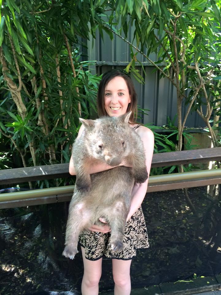 wombat pic
