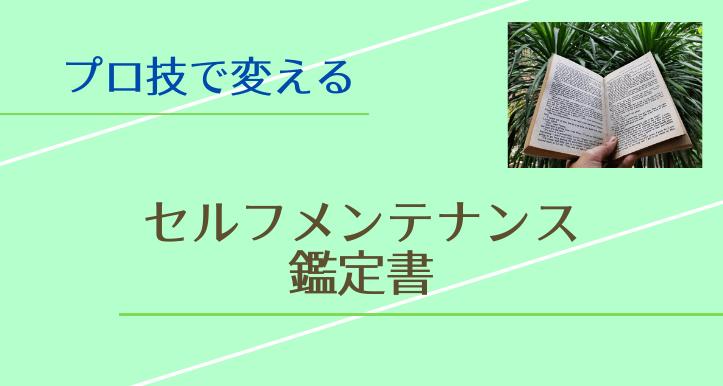 【メニュー】私だけのセルフメンテナンス鑑定書