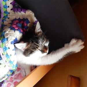Minnie-blanket