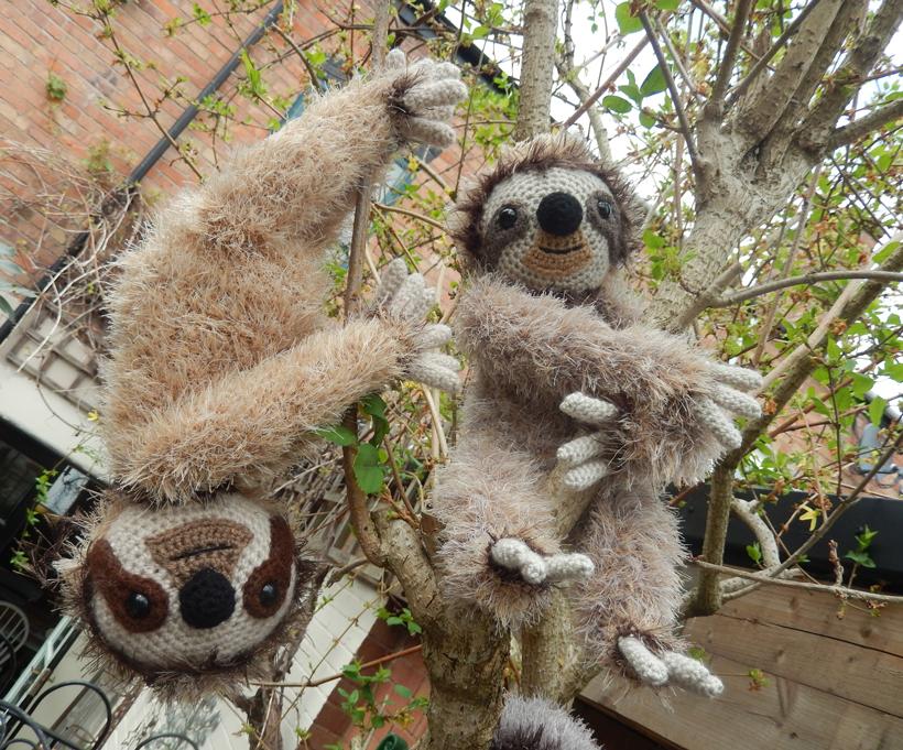 sloth-climbing