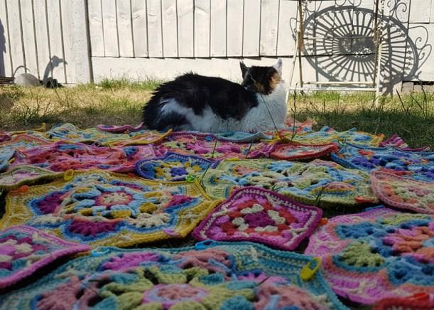 minnie-blanket-testing