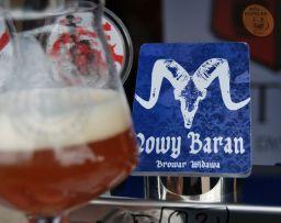 Wrocławski Festiwal Dobrego Piwa 2014 (14)