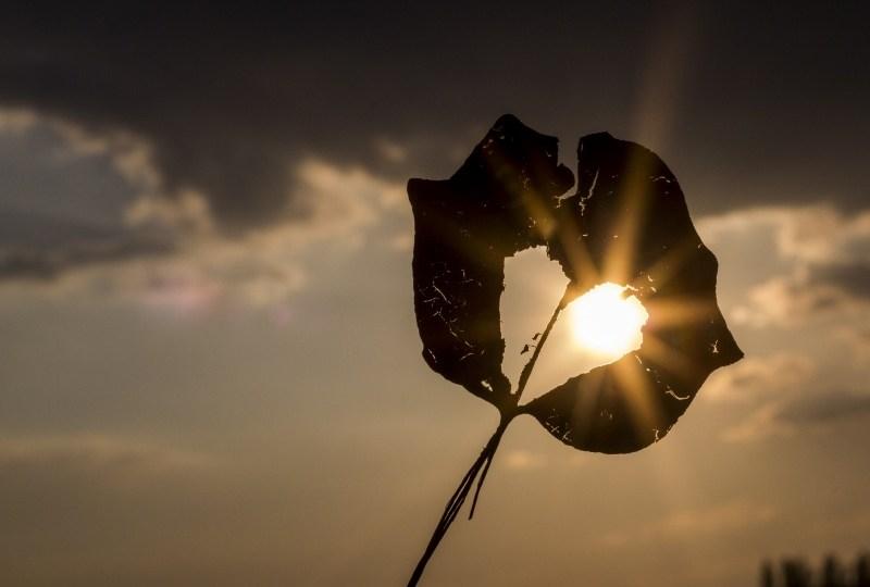 Kenapa Mudah Sekali Sakit Hati Kasihan Hatinya Terminal Mojok