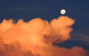 bulan terbelah malam siang matahari mukjizat nabi muhammad saw rasulullah abu jahal habib bin malik raja syam kisah nabi cerita nabi mojok
