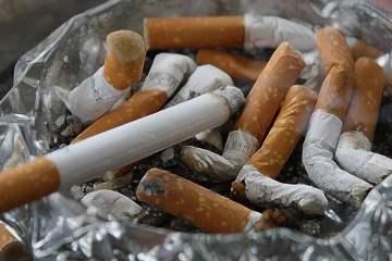 Benarkah Wartawan Tempo Boleh Merokok Ganja?